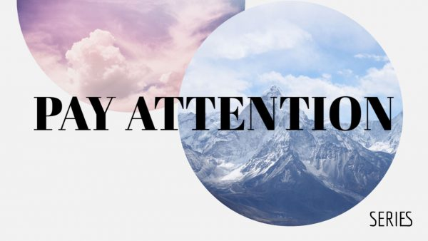 Pay Attention Series