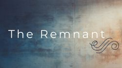 The Remnant Series